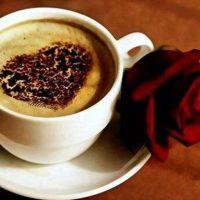 قهوه ۰۸۱