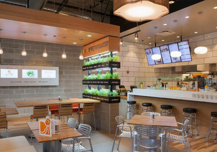 راه اندازی رستوران ارگانیک